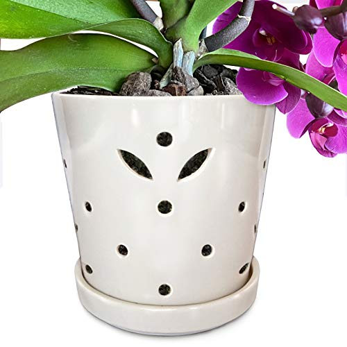 "Atri Ceramic Orchid Pot with Holes, 5"" Small Decorative Flower Pot with Drainage Hole and Saucer (5"" H x 5.25"" W top and 4.25"" W bottom) Promotes Circulation, Deters Over-Watering For Beautiful Blooms"