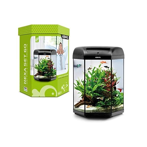 Aquael Hexa-Set Aquarium 60 L & 20 Liter