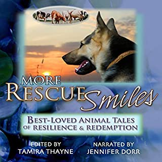 More Rescue Smiles cover art