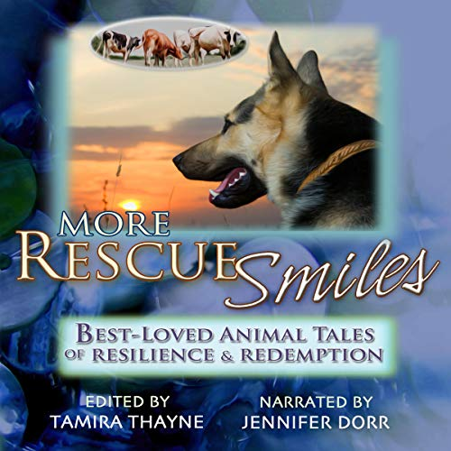 More Rescue Smiles audiobook cover art