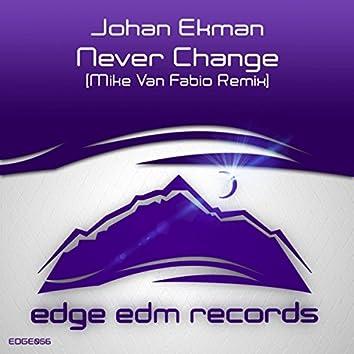 Never Change (Mike Van Fabio Remix)