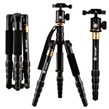 TARION trípode de 4 secciones para todos los tipos de cámara SLR digital negro
