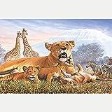 Kit 5D de pintura de diamantes adultos y niños regalos DIY, bordado de diamantes de imitación punto de cruz, decoración de la pared del hoga Tigre Jirafa Cebra 40 x 50 cm