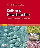 Zell- und Gewebekultur: Von den Grundlagen zur Laborbank - Toni Lindl