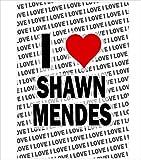 AK Giftshop Poster – I Love Shawn Mendes – Geschenk –