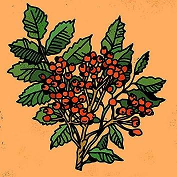 Rowanberry Jam