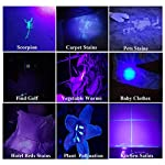 UV Black Light Flashlight, Super Bright 68 LED Best Pet Dog Cat Urine Detector Light Flashlight for Pet Urine Stains, UV Blacklight Flashlight for Bed Bugs Scorpions, Home Hotel 16