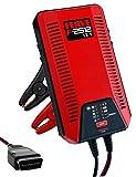 FERVE Herramientas para baterías de coche