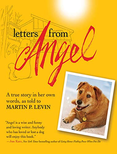 Letters from Angel: A True Story In her Own Words