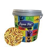 Lyra Pet® 10 L (Liter) Mehlwürmer 10000 ml getrocknet Fische Nager Futter im Design Eimer