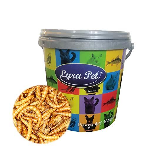 Lyra Pet® 2 x 5 L (Liter) Mehlwürmer 10000 ml getrocknet Fischfutter Nager im Design Eimer