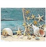 ksyklys Ölgemälde, Malen nach Zahlen für Erwachsene, Anfänger Strandmuscheln für Erwachsene Kinder Kits Home Haus Dekor-12x16inch(Ohne Rahmen)