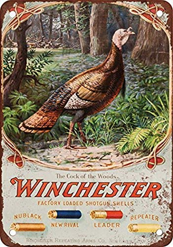 Joycenie Great Tin Sign Aluminum Metal Sign 1905 Winchester Shotgun Shells Vintage Look 8x12 Inch