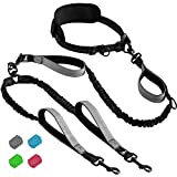 SparklyPets Hands Free Double Dog Leash – Dual Dog Leash for Medium and Large Dogs – Dog Leash for 2 Dogs with Padded Handles, Reflective Stitches, No Pull, Tangle Free
