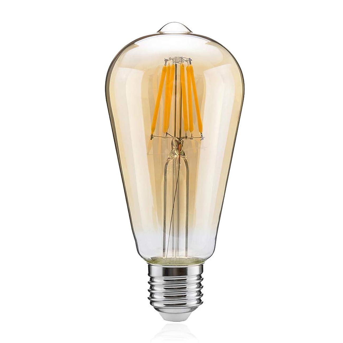 工業用貯水池現実的LEDエジソン電球 60W形 フィラメント電球 エジソンランプ LED電球 E26 8W 電球色 850lm ST64 アンバーガラス (8W金色 1個入り)