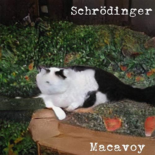 macavoy