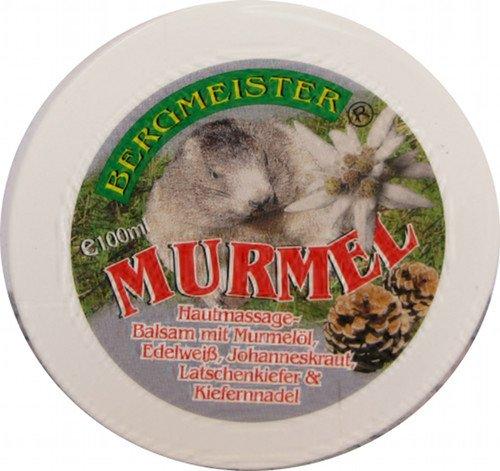 Murmeltier-Salbe einzigartig mit wertvollem Edelweiß, Johanniskraut, Latschenkiefer und Kiefernnadel, hervorragender Massage Balsam für Gelenke und Muskeln, sehr ergiebig, MADE IN AUSTRIA 100 ml
