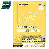 ナカバヤシ コピー&プリンタ用紙 カラータイプ A3サイズ 100枚 イエロー HCP-3101-Y