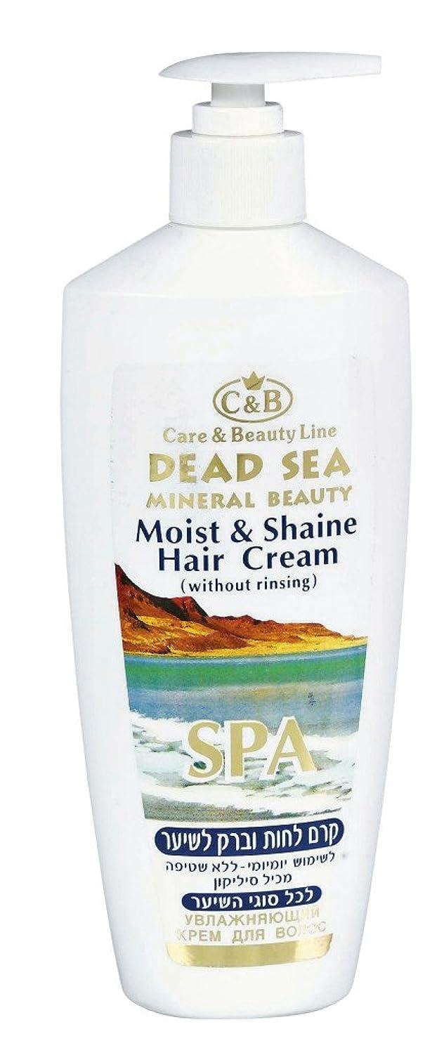キルトブラインド可決潤いと輝きのヘアクリーム 350mL 死海ミネラル ( Moist & Shine Hair Cream