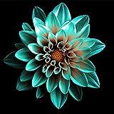 Tesoros de jardinería al aire libre,Flor increible,Hermosas flores ornamentales,Bulbo dalia-6 Bulbos