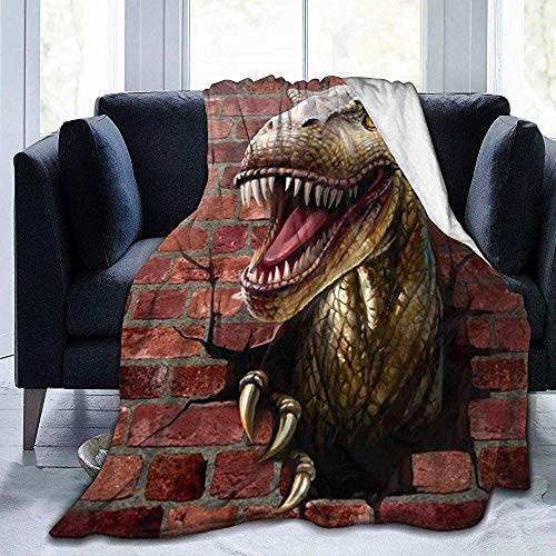 Wobuzhidaoshamingzi Dinosaur Through The Brick Wall Ultra Soft Fleece Blanket flanel Velvet Plush Throw Jacket