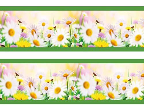 wandmotiv24 Bordüre Daisyfield 260cm Breite - Vlies Borte Tapetenbordüre Bordüren Borde Wandborde Gänseblümchen Blumen Sommer M0030