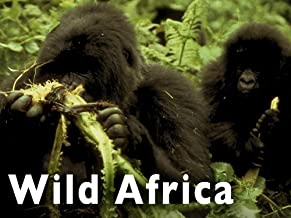 Best wild africa mountains Reviews