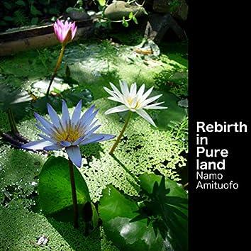 Rebirth in Pure Land (Namo Amituofo)