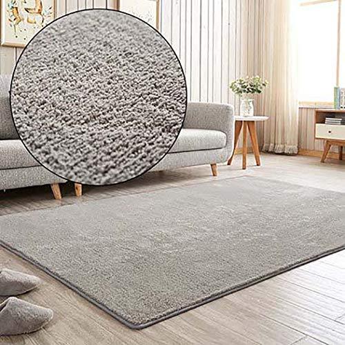 Ultra Soft Teppiche Einfache moderne Teppiche Sofa Couchtisch Bett der Maschine Waschen Haushalts Teppich für Wohnzimmer Schlafzimmer Bodenteppich,Lightgrey,100x200cm