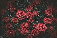 HD 7x5ft写真の背景赤いバラ花緑の葉悲観的な自然写真の背景背景写真写真撮影パーティー新生児子供赤ちゃんポートレート写真スタジオ小道具ポリエステル