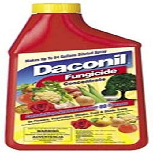 Daconil Fungicide Concentrate 16 oz. - 100523634