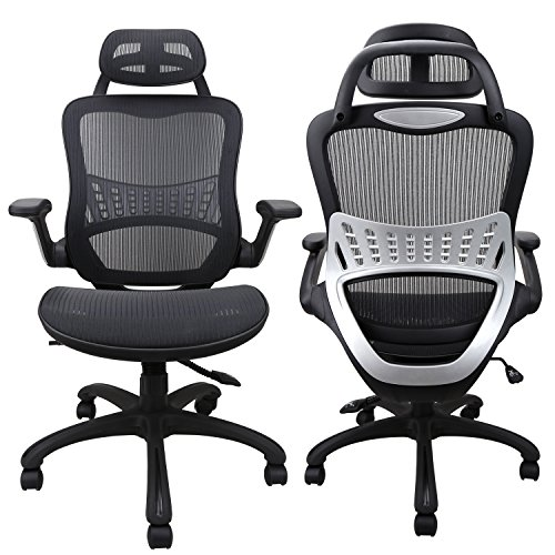 Ergousit High Back Ergonomic Office Chair Mesh Desk Chairs Adjustable Office Chair with Breathable Backrest, Headrest, Armrest and Seat Height for Conference Room (Black) (4748)