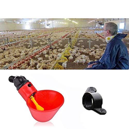 DingLong Wasserspender Feeder für Huhn, Automatisch Tränkanlagen, Trinkbecher sind Enthalten Kostenlose Nektar Patio Yard Fenster Huhn Geschenk, Fütterungsgeräte Tränken (12pcs)