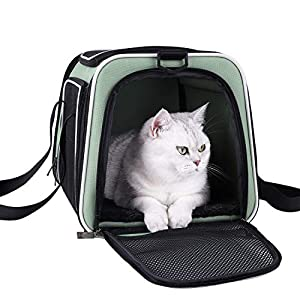 petisfam Soft Pet Carrier for Medium Cats and Small Dogs with Cozy Bed, 3 Doors, Top Entrance | Airline Approved, Escape-Proof, Breathable, Leak-Proof, Easy Storage (Green)
