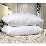 EVELYN LIVING - Goose Feather and Down Pillows Pack of 2 Hotel Quality