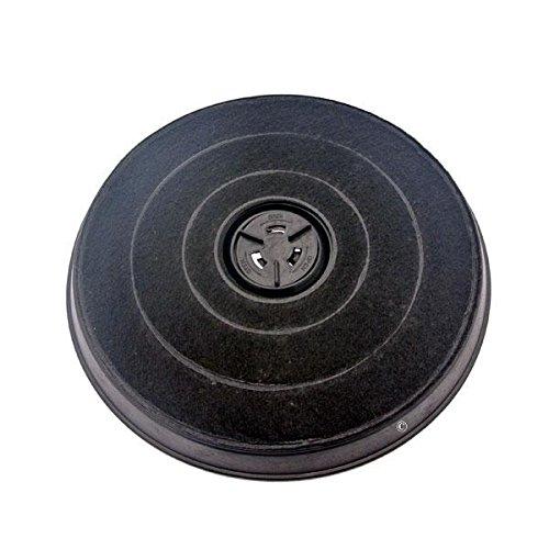 Roblin filtre charbon 5403003