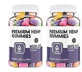 (2 Pack) Hemp Gummies Premium 60000 mg High Potency - 100 Per Fruity Gummy Bear with Hemp Oil