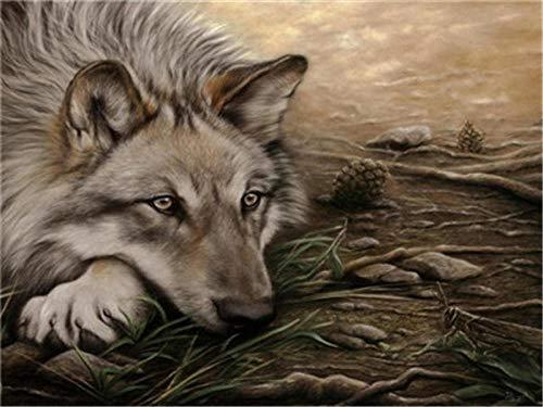 Kit de pintura a óleo faça-você-mesmo por números para crianças adultos iniciantes - Desenho de lobo velho solitário com pincéis, decoração de casa, presentes 40,64 x 50,8 cm (sem moldura)