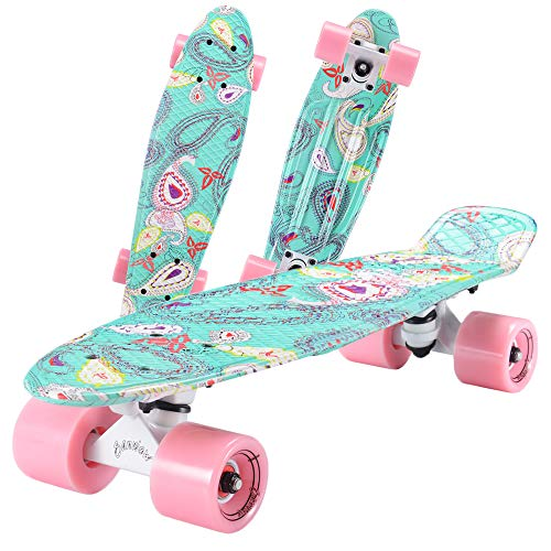 SANVIEW Complete 22 Inch Mini Cruiser Skateboard for Youths Beginners or Kids Swan 2
