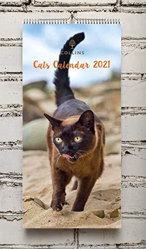 Collins Calendario Gatto 2021