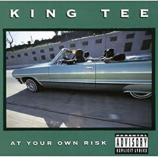 At Your Own Risk by King Tee (2016-01-06)