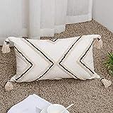 Boho Textured Moroccan Geometric Lumbar Throw Pillow Cover Bohemian Tufted Tassel Pillow Case, Handwoven Texture Farmhouse Accent Rectangular Pillowcase for Couch Sofa Bedroom Outdoor, Small 12'x20'