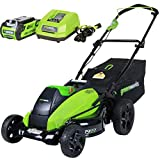 QILIN 19-Inch 40V 800W Electric Grass Mower Rechargeable Home Grass Trimmer for Garden Park Lawn Prune
