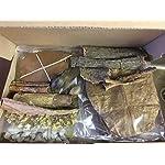 Wasseraufbereitung-Set-XXL-fr-natrlich-gesundes-Wasser-im-Aquarium-und-niedrigem-pH-Wert-Erlenzapfen-Seemandelbaumbltter-Montmorillonit-Zeolith-Seemandelbaumrinde-Saatmandel-Moringa