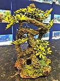 AQ - Adorno para Acuario con raíces de bonsái, con Plantas de plástico
