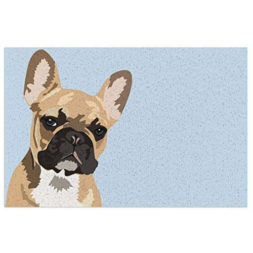 Doormat with Heavy-Duty PVC Backing French Bulldog Cute Frenchie Durable Non Slip Entrance Rug for Entry Front Door Mat Indoor&Outdoor Welcome Mat 23.6X15.7inch