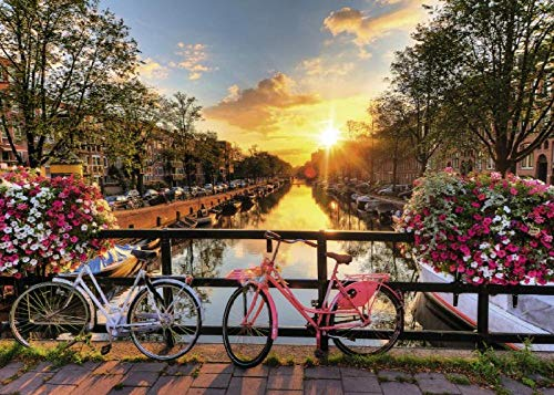 Zhonchng DIY olieverfschilderij op nummer, verf op nummer Kits - Amsterdam Zonsopgang 16 * 20 Inch Digitale Olieverfschilderij Canvas Wall Art Artwork Decor Gifts Zonder frame