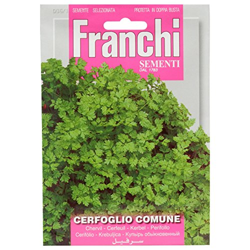 Seeds of Italy Ltd 36/1 - Perifollo