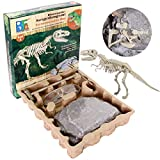 SZSMD Ausgrabungsset für Kinder, Dino Ausgrabungs Set Tyrannosaurus Rex, Paläontologie &...