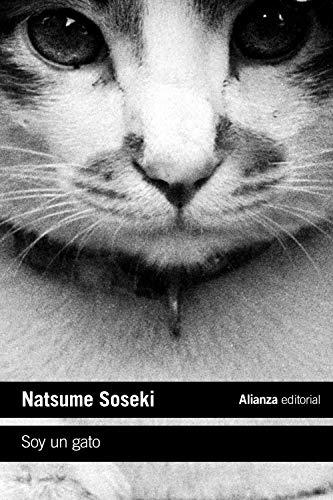 Soy un gato (Libro bolsillo)